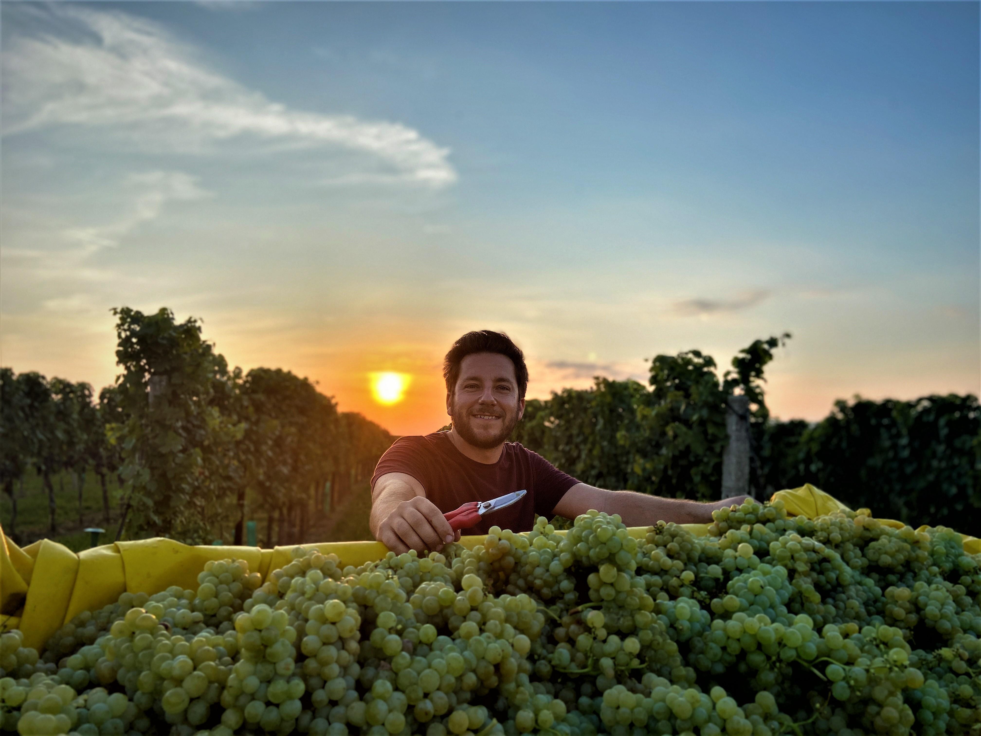 Weingut Mario Felder